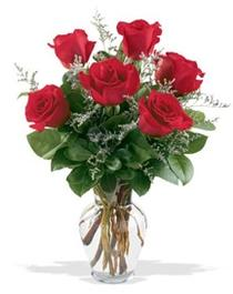 Antalya Melisa çiçek gönderme sitemiz güvenlidir  7 adet kirmizi gül cam yada mika vazoda sevenlere