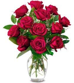 Antalya Melisa online çiçek gönderme sipariş  1 düzine kirmizi gül sevenlere özel vazo gülleri