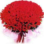 Antalya Melisa online çiçekçi , çiçek siparişi  1001 adet kirmizi gülden çiçek tanzimi