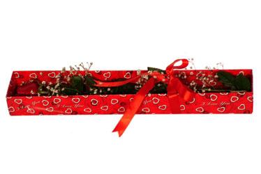 Antalya Melisa çiçekçi telefonları  kutu içerisinde 1 adet kirmizi gül