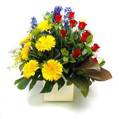 Antalya Melisa online çiçek gönderme sipariş  9 adet gül ve kir çiçekleri cam yada mika vazoda