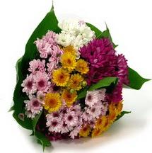 Antalya Melisa çiçekçi telefonları  Karisik kir çiçekleri demeti herkeze