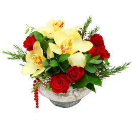 Antalya Melisa çiçek gönderme  1 adet orkide 5 adet gül cam yada mikada