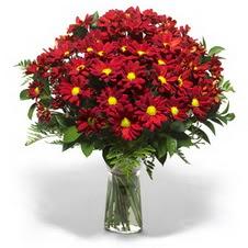 Antalya Melisa çiçek yolla  Kir çiçekleri cam yada mika vazo içinde