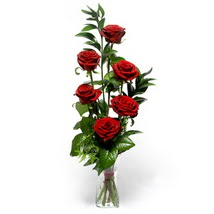 Antalya Melisa çiçek siparişi sitesi  cam yada mika vazo içerisinde 6 adet kirmizi gül