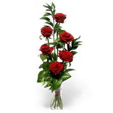 Antalya Melisa uluslararası çiçek gönderme  mika yada cam vazoda 6 adet essiz gül