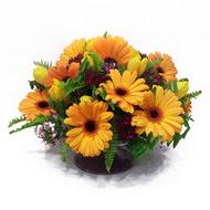 gerbera ve kir çiçek masa aranjmani  Antalya Melisa çiçek siparişi vermek