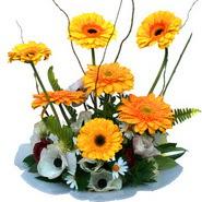 camda gerbera ve mis kokulu kir çiçekleri  Antalya Melisa çiçekçi telefonları