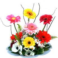 Antalya Melisa hediye çiçek yolla  camda gerbera ve mis kokulu kir çiçekleri