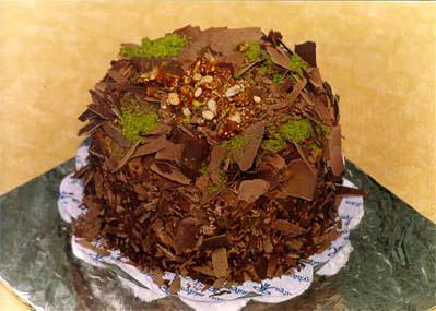Çikolatali 4 ila 6 kisilik yas pasta  Antalya Melisa çiçek gönderme sitemiz güvenlidir