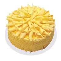 Muzlu pasta 4 ile 6 kisilik yas pasta  Antalya Melisa çiçekçi telefonları