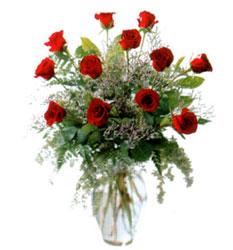 Vazo içerisinde 11 kirmizi gül  Antalya Melisa çiçek siparişi vermek