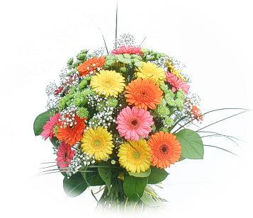 13 adet gerbera çiçegi buketi  Antalya Melisa online çiçek gönderme sipariş