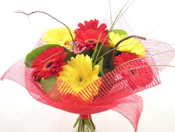 9 adet gerbera çiçeklerinden buket  Antalya Melisa çiçek satışı