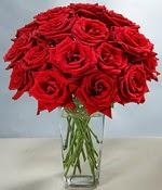 Antalya Melisa çiçek siparişi sitesi  Sevdiklerinize özel ürün 12 adet cam içerisinde kirmizi gül  Antalya Melisa hediye çiçek yolla