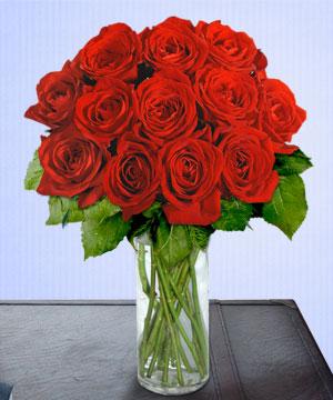 Anneme 12 adet cam içerisinde kirmizi gül  Antalya Melisa çiçek siparişi sitesi