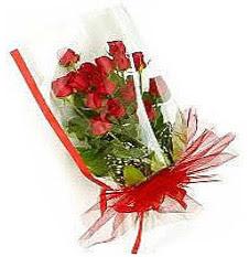 13 adet kirmizi gül buketi sevilenlere  Antalya Melisa çiçek siparişi vermek