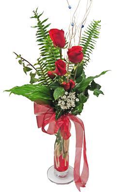 Çiçek gönderin cam vazoda 3 gül çiçekleri  Antalya Melisa çiçek siparişi sitesi