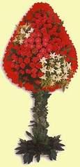 Antalya Melisa çiçek gönderme  dügün açilis çiçekleri  Antalya Melisa çiçek online çiçek siparişi