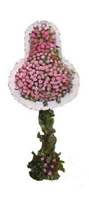 Antalya Melisa ucuz çiçek gönder  dügün açilis çiçekleri  Antalya Melisa internetten çiçek siparişi