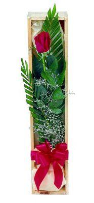 1 adet kutuda kirmizi gül  Antalya Melisa çiçek gönderme sitemiz güvenlidir