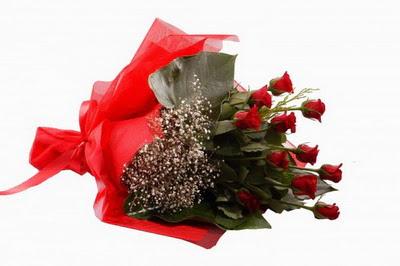 Antalya Melisa çiçek siparişi sitesi  11 adet kirmizi gül buketi çiçekçi