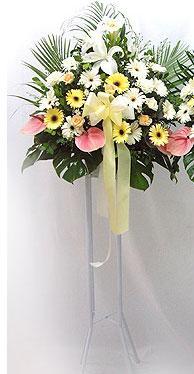 Antalya Melisa online çiçek gönderme sipariş   perförje çiçegi dügün çiçekleri