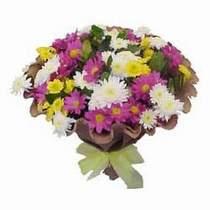 Antalya Melisa çiçekçi telefonları  Mevsim kir çiçegi demeti