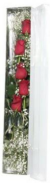 Antalya Melisa çiçek siparişi sitesi   5 adet gülden kutu güller
