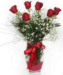 7 adet gülden cam içerisinde güller  Antalya Melisa 14 şubat sevgililer günü çiçek