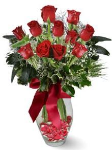 9 adet gül  Antalya Melisa internetten çiçek satışı  kirmizi gül