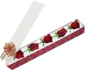 Antalya Melisa internetten çiçek satışı  kutu içerisinde 5 adet kirmizi gül