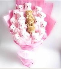 17 adet pelus ayicik buketi  Antalya Melisa Melisa İnternetten çiçek siparişi