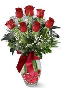 Antalya Melisa internetten çiçek siparişi  7 adet kirmizi gül cam vazo yada mika vazoda