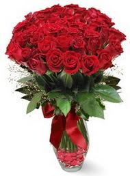 19 adet essiz kalitede kirmizi gül  Antalya Melisa 14 şubat sevgililer günü çiçek