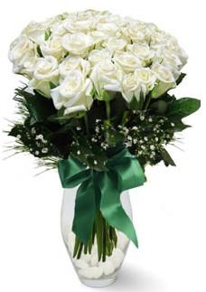 19 adet essiz kalitede beyaz gül  Antalya Melisa çiçekçiler