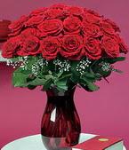 Antalya Melisa çiçek online çiçek siparişi  11 adet Vazoda Gül sevenler için ideal seçim