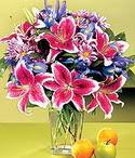 Antalya Melisa çiçek mağazası , çiçekçi adresleri  Sevgi bahçesi Özel  bir tercih