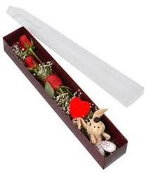 kutu içerisinde 3 adet gül ve oyuncak  Antalya Melisa cicekciler , cicek siparisi