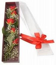kutu içinde 5 adet kirmizi gül  Antalya Melisa internetten çiçek siparişi