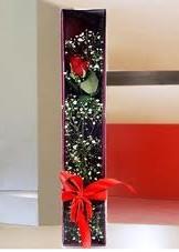 kutu içinde tek kirmizi gül  Antalya Melisa çiçek online çiçek siparişi