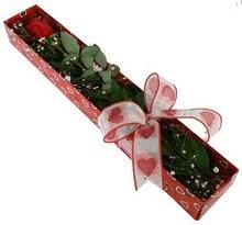 Tek kirmizi gül kutu içerisinde  Antalya Melisa güvenli kaliteli hızlı çiçek