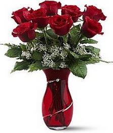 Vazo içinde 8 adet kirmizilar içinde güller  Antalya Melisa internetten çiçek siparişi