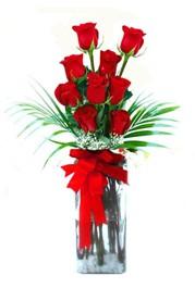 Antalya Melisa çiçekçi telefonları  9 adet mika yada cam vazoda gül tanzimi
