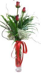Antalya Melisa çiçek siparişi sitesi  3 adet kirmizi gül vazo içerisinde