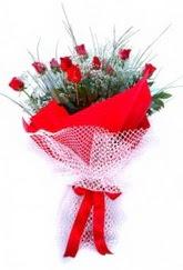 Antalya Melisa Melisa İnternetten çiçek siparişi  9 adet kirmizi gül buketi demeti