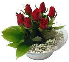 Antalya Melisa internetten çiçek satışı  cam yada mika içerisinde 5 adet kirmizi gül