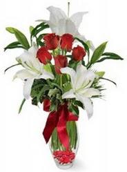 Antalya Melisa çiçek siparişi vermek  5 adet kirmizi gül ve 3 kandil kazablanka