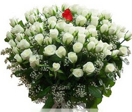 Antalya Melisa internetten çiçek satışı  100 adet beyaz 1 adet kirmizi gül buketi