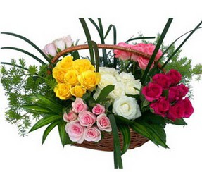 Antalya Melisa ucuz çiçek gönder  35 adet rengarenk güllerden sepet tanzimi